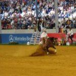 FEI WEG 2006 Aachen