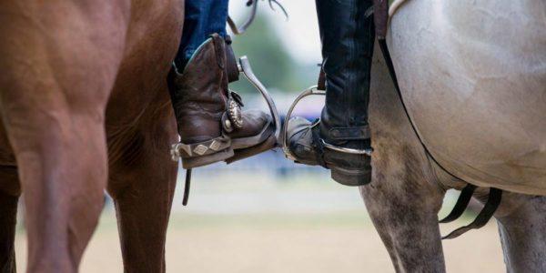 Godność końską jako do miary przywieść